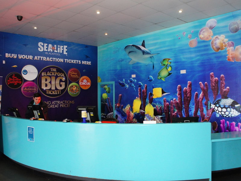 Wallcoverings Blackpool Sealife Centre