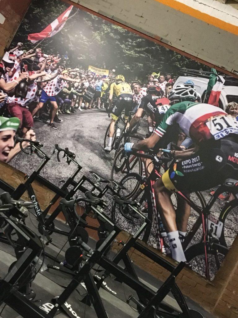 Wall Graphics Gym Portfolio