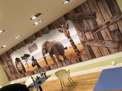 blackpool zoo wall graphics