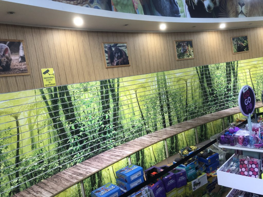 Retail Wall Graphics Blackpool Zoo Gift Shop