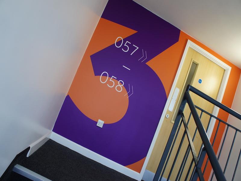 SONY DSC Wall Graphics