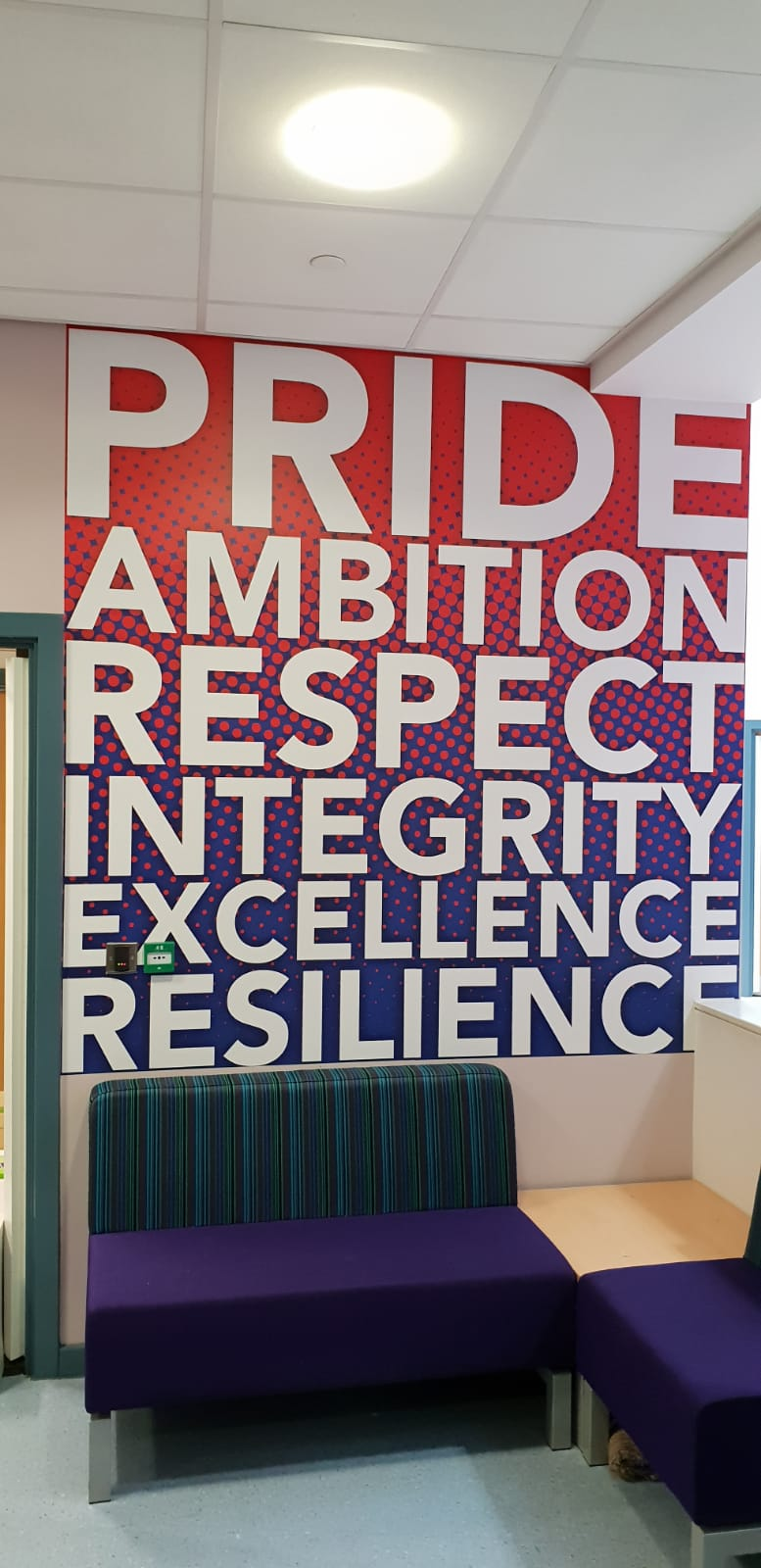 Pride Ambition Respect Integrity Excellence Resilience Wall Graphics