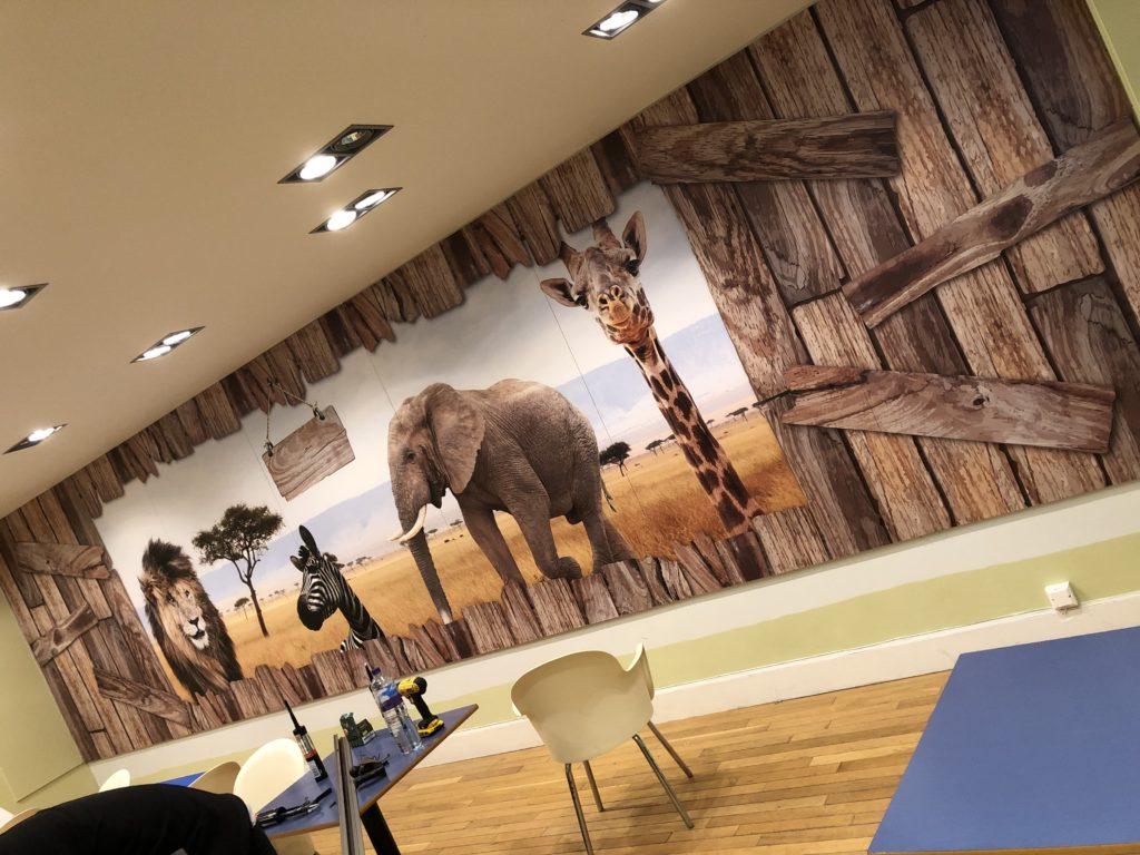 blackpool zoo wall graphics